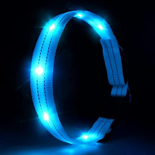 PcEoTllar LED Hundehalsband Leuchthalsband Wasserdicht Leuchten Hundehalsband USB Wiederaufladbare Blinkende Hundehalsbänder Einstellbar Super Bright für Nacht Dunkel - Blau - M