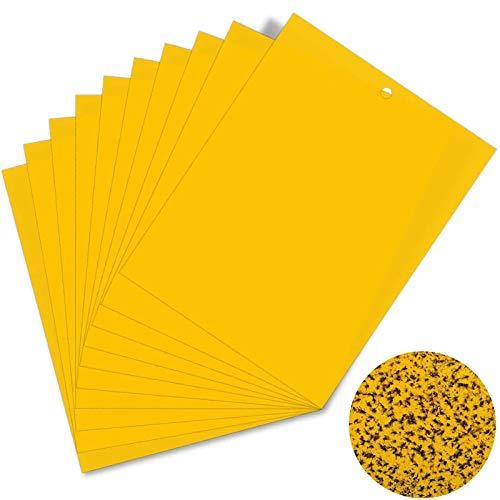 Funmo - 30 Pcs Trampas de Insectos de Doble Cara, Papeles Pegajosos Amarillos Trampas de Moscas, para Moscas, pulgones, mineros de Hojas, polillas