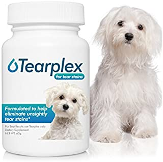 maltese dogs stay white tear stain remover