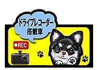 ドライブレコーダー 搭載車 録画中 犬 ステッカー チワワ30 シール 車 車用 雑貨 グッズ
