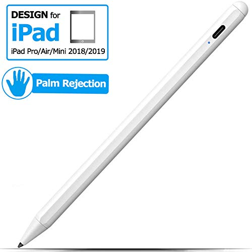 anngrowy Stylus Pen for iPad Pencil with Palm Rejection, Active Stylus for iPad 2018(6th Gen)/ iPad 2019(7th Gen)/ iPad Pro 11/12.9 Inch/Air 3/ Mini 5, Type-C Rechargeable Digital Pencil