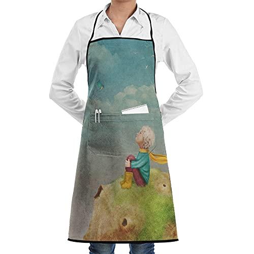 XWJZXS Delantal de cocina Impermeable y antiincrustante para hombres delantal de chef para mujeres restaurante de jardinería barbacoa cocinar hornear,El Principito Rosa En El Planeta Hermoso