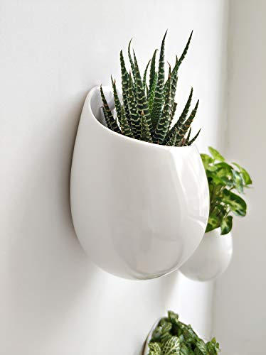Mkono 4 Inch Wall Mounted Planter Round Ceramic Hanging Plant Holder Decorative Flower Display Vase Succulent Pots for Indoor Plants, Set of 3, White (Plants NOT Included) 4 Unique Design: Round shape plant vase finished with matte white, its glazed apperance looks in modern. Minimalist style and elegant design add decorative touch to any home and office decor, to brighten up your living space with indoor plants. Great gift idea for plant lover! Multipurpose Use: Improved opening is large enough for planting small succulents, ball cactus, herbs, air plants, water plants, or artificial plants. Functional for storage small items, such as placing makeup brush, pencils, mark pen, tableware, or toiletries in different scenes. Versatile Wall Decor: A hole in the back allows to hang on wall displaying your favourite plants. As a wonderful wall decor, prefect for using at home, office, shop. Additional ornament for hanging in bedroom, living room, kitchen, restroom, or entryway.