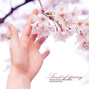 봄의 향기 스미는