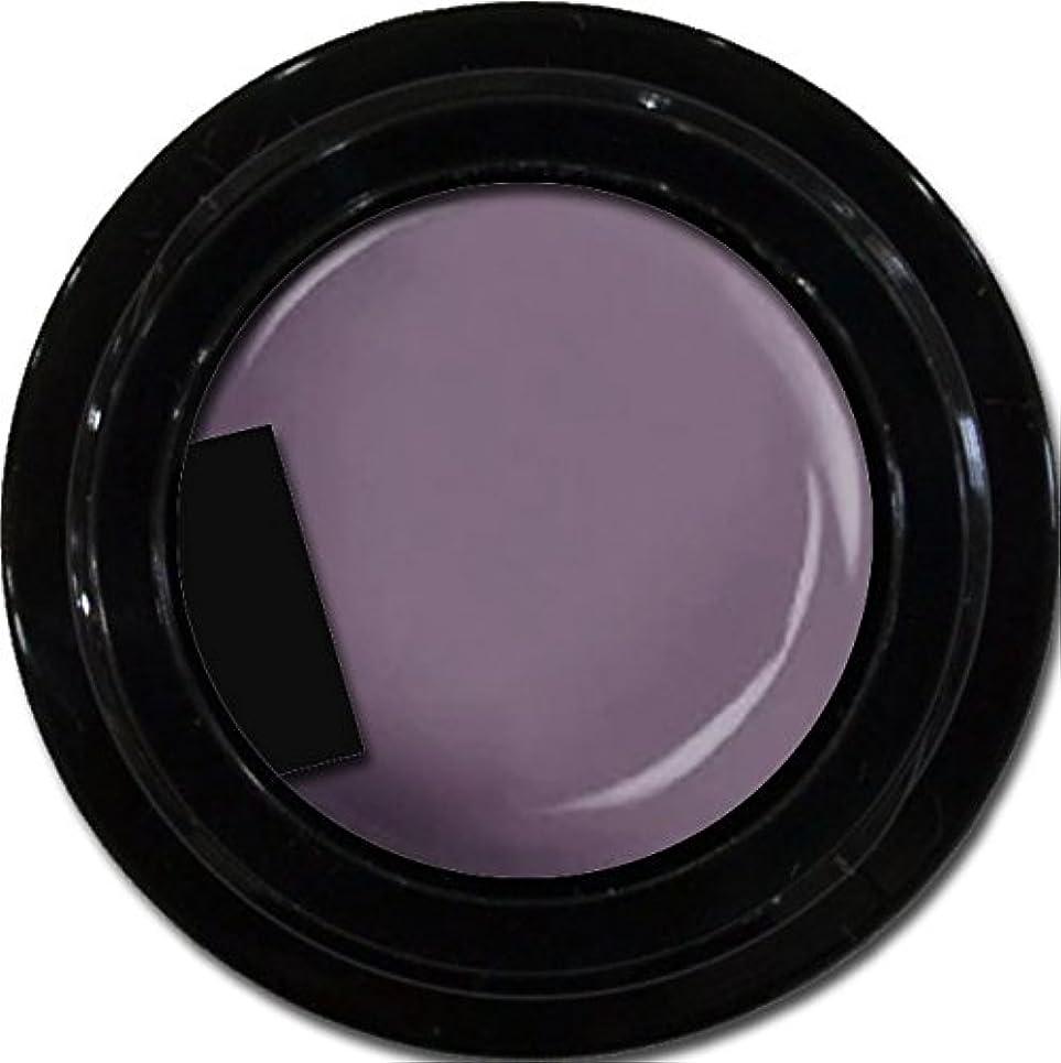読みやすさ傾向抑制カラージェル enchant color gel M507 KyotoMurasaki 3g/ マットカラージェル M507 京都むらさき 3グラム