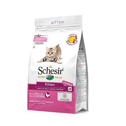 Schesir Gatto Kitten Gr 400