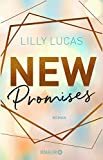 New Promises: Roman (Green Valley Love, Band 2) - Lilly Lucas