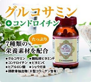 世田谷自然食品グルコサミン+コンドロイチン(300㎎×240粒)1個
