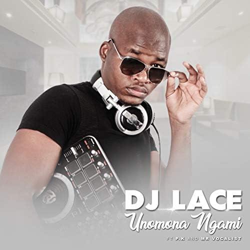 DJ Lace feat. P.K &  Mr Vocalist