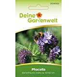 Phacelia Bienenfreund | Blumensamen für Bienen | Gründüngung | Samen für 3m² | Bienenweide