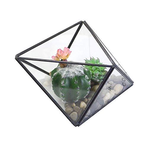QHWJ Usine de Verre Boîte, géométrique Verre Cache-Pot Diamond Flower Chambre Creative Décoration Succulent Objets décoratifs Planteur Fern Moss Pot de Fleurs (17 × 12 × 9.5cm),Noir