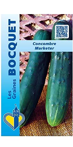 Les Graines Bocquet - Graines De Concombre Marketer - Graines Potagères À Semer - Sachet De 3Grammes