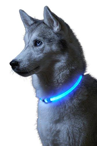 Auraglow Collar de Seguridad para Perros con Luz Super Brillante LED Intermitente de Alta Visibilidad ✅