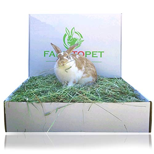 "Farm to Pet ""Best"" 2nd Cutting Timothy hay Pet Food for Rabbits, Guinea Pigs, Chinchillas, Hamsters, Mice, Birds, and all Small Pets. Fresh, Clean with no Insecticides"