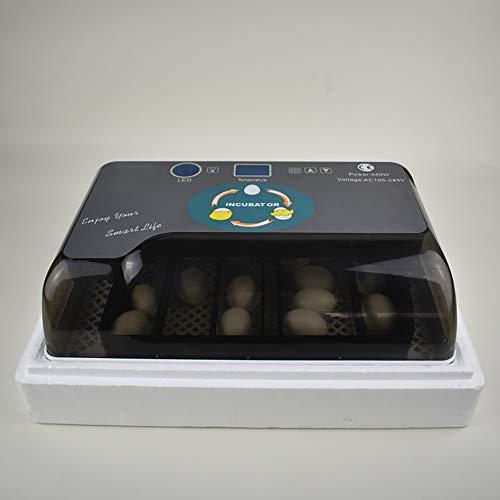 Nachar Incubadora de huevos digitales, pequeña incubadora automática de 6 huevos para uso en el hogar Control automático de temperatura de Hatcher