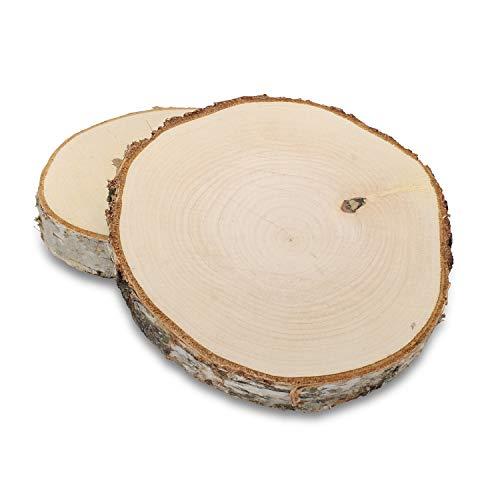 GREENHAUS XXL Birkenscheiben aus Deutschland 15-20 cm 4 Stück geschliffen Holzscheiben Baumscheiben Baumstamm Holzdeko