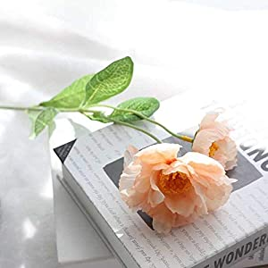 Artificial and Dried Flower 2 Pieces/lot Wedding Silk Artificial Poppy Bouquet DIY Handmade Party Scrapbook Decoration Craft Rosemary Fake Flower Home Decor – ( Color: Champagne )