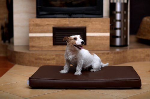 tierlando Carlos Ortho-Medic Orthopädische Hundematte Kunstleder Visko Hundebett Matratze Größe: M - 80x60cm - CA3-   Farbe: 01 braun
