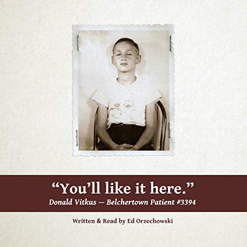 You'll Like It Here Audiobook By Ed Orzechowski cover art