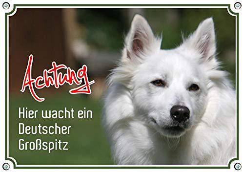 Petsigns Hundeschild weißer Großspitz -wunderschönes uv-beständiges Metallschild in Fotoqualität, DIN A5