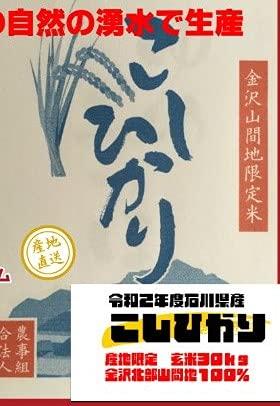こしひかり 玄米 30kg 金沢市北部山間地 自然の湧水で生産