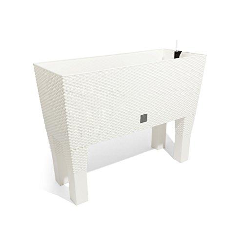 Prosperplast Blumentopf, weiß, 60x25x46 cm, DRTC600H-S449