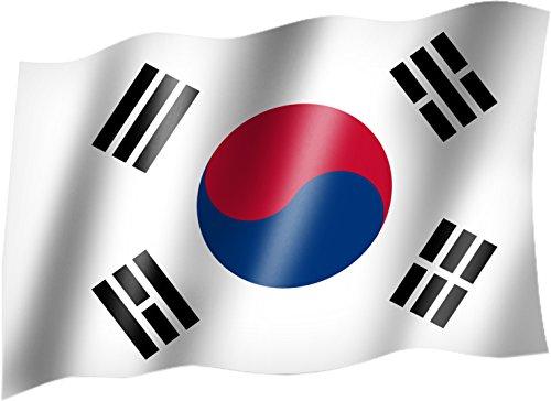Flagge/Fahne SÜDKOREA / KOREA SÜD Staatsflagge/Landesflagge/Hissflagge mit Ösen 150x90 cm, sehr gute Qualität