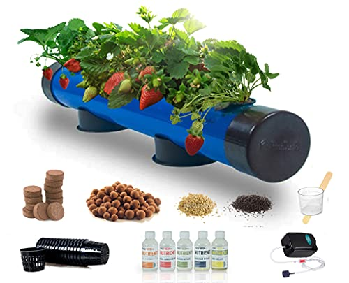 Pindfresh Hydroponics Kit for Home - PindPipe - 5 Plants, Beginners Hydroponic System - Reusable - for Indoor/Outdoor hydroponics - Seeds Included (Blue)