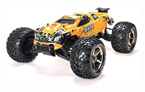 PROGLEAM RC Car, Vkar Racing 1/10 4WD Brushless Off Road Truggy Bison RTR 51201 RC Car