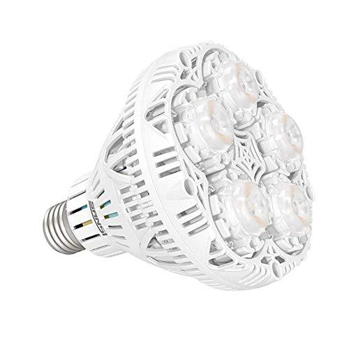 SANSI Pflanzenlampe LED E27 Vollspektrum-24W Pflanzenlicht Tageslichtweiß 2000lm Grow Light Voller Zyklus Wachstumslampe für Gewächshäusern,Zimmerpflanzen,Hydroponische Pflanze