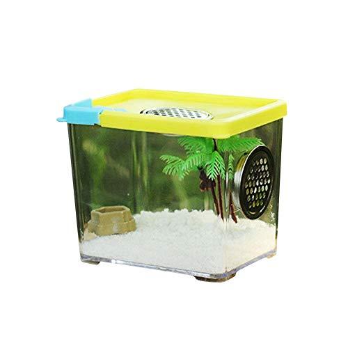 pologyase Spinnen Fütterungsbox Terrarium Reptilienbox Klare Acryl-Reptilienbox Für Kleines Reptil (Landschaftsbau Nicht enthalten)