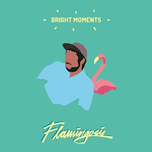Flamingosis