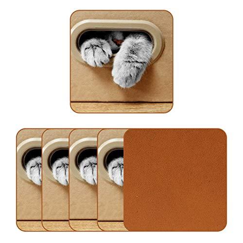 Posavasos de piel para bebidas, diseño de gato en caja de cartón, cuadrado, para proteger muebles, resistente al calor, decoración de bar, juego de 6