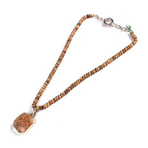 eGemCart Natural Picture Jasper 6mm Smooth Rondelle Beads Gemstone Necklace with 925 Sterling Silver Picture Jasper Pendant for Women | Gemstone Beads Necklace | AAA Quality Beads