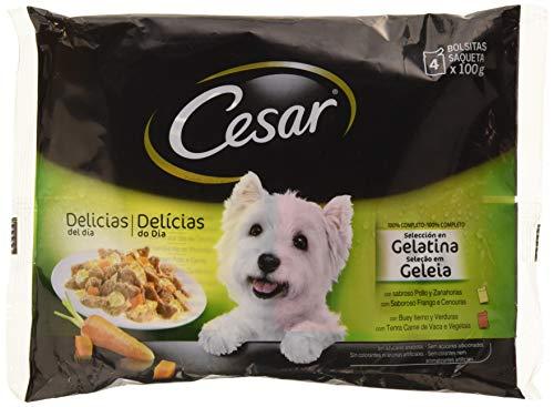 César Selección Bolsitas Perros Gelatina - Pack