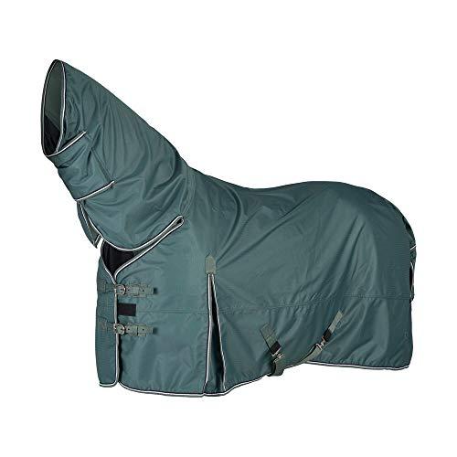 horze Glasgow Leichte Regendecke mit Halsteil, Weidedecke fur Pferde, Decke fur Pferd, 600D, Silver Pine Gre, 155