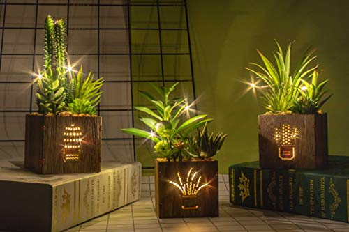 BEGONDIS Set of 3 Artificial Succulents with Led Lights in Wooden Box, Artificial Plants Plastic...