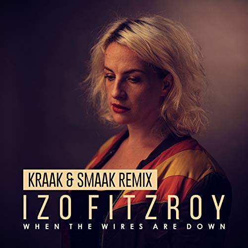 When the Wires Are Down (Kraak & Smaak Remix