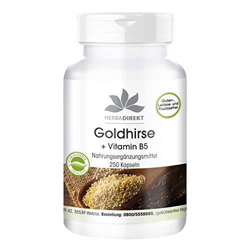 Goldhirse Kapseln - mit Vitamin B5 - vegan - Haar Nagel Haut Kapseln - 250 Kapseln