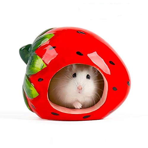 gutongyuan Small Animal Hideout Ceramic Hamster House Chinchilla Mini Hut Cave Cage Accessories for Dwarf Hamsters Gerbils and Hedgehog (Strawberry)
