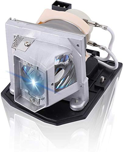 AWO Original Projector Lamp Bulb BL-FU240A / SP.8RU01GC01 / BL-FU190E / SP.8VC01GC01 with Housing for OPTOMA HD25e,HD131Xe,HD131Xw,DH1011,EH300,HD131X,HD25,HD25-LV,HD2500,HD30,HD30B,HD39DARBEE