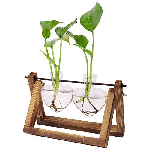 ANBET Vaso a bulbo con Supporto in Legno Vintage, Vasi per Piante idroponiche Vaso di Fiori Piante da Tavolo in Vetro Decorazioni per Casa Ufficio Giardino (3 Vase)