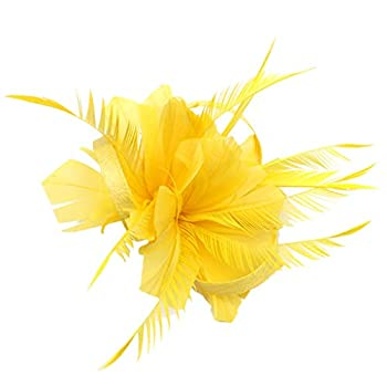 Iusun Feather Fascinators Flower Derby Hat for Cocktail Ball Hairpin Women Hair Head Hoop Simple Sweet Girls Headband Accessory Hair Care Jewelry Decoration Hairband