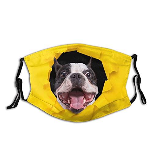 Divertido Bulldog francés cara M-A-S-K para adultos cara pasamontañas reutilizable con 2 filtros para hombres y mujeres