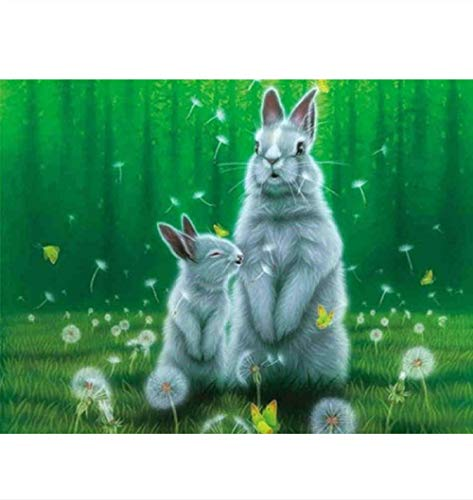 N\A Paint By Numbers For Adults Gift For Friend Diy Painting Rabbit And Dandelion 40X50Cm