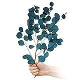 Eyscoco Eukalyptus Getrocknet,Eukalyptus Trockenblumen Echt,Ewige Blume Reine Natürliche Pflanze Rundes Blatt Haus Dekoration,Getrocknete Blumen Deko für Vase Hochzeit Zuhause Party Garten (Blue)