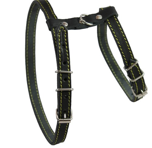 Dogs My Love Real Leather Feline Harness, 12