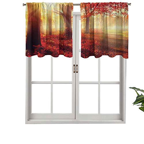 Hiiiman Cenefas de cortina con dobladillo para barra de sol, vigas a través del bosque viejo y neblinado en temporada de otoño, juego de 2, 42 x 24 pulgadas con aislamiento térmico para sala de estar