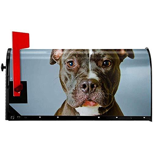 AmyNovelty Briefkasten Cover,Coole Pitbull Dog Graphics Brief Briefkastenabdeckung, Personalisierte Briefkastenabdeckungen Für Willkommensdekoration 45.8x52.6cm
