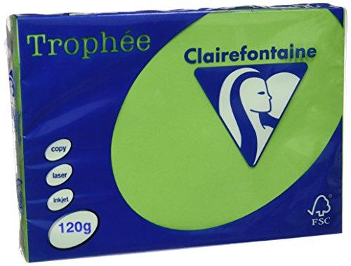 Clairefontaine Trophee Papier/1293C A4 minze/maigrün 120g/qm Inh.250